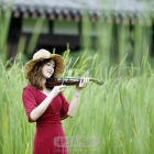 青青湖边草