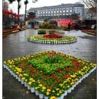天府花展景观——文化公园