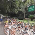 共享单车挤占人行道,无人管理.