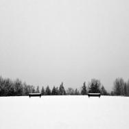 路遥,雪净,...